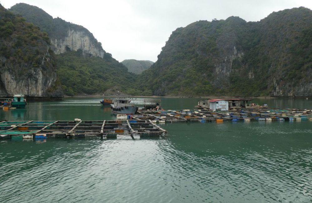 halong-bucht-vietnam-2