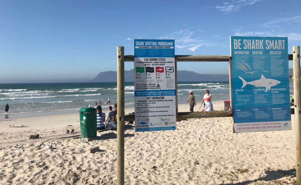 muizenberg-beach-3