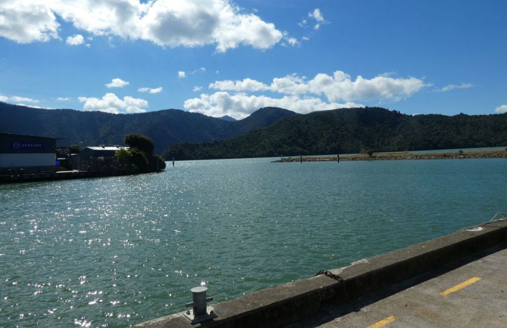 nelson-picton-wellington-2