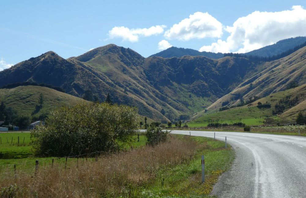nelson-picton-wellington-3