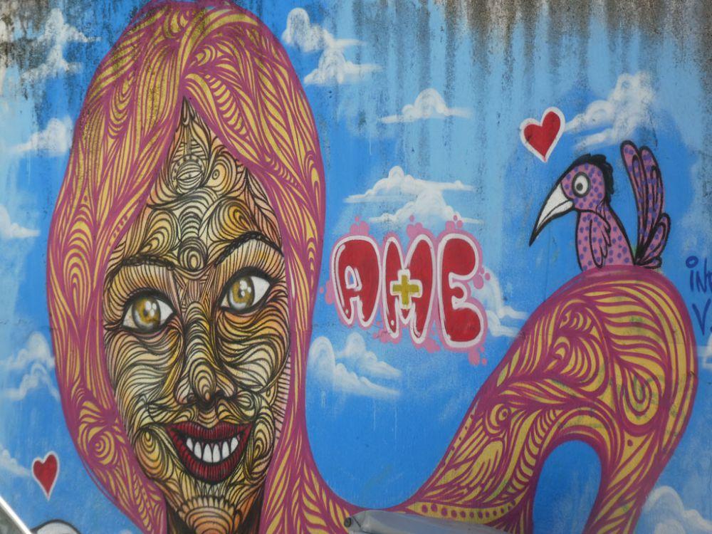streetart-pipa-brasilien-2
