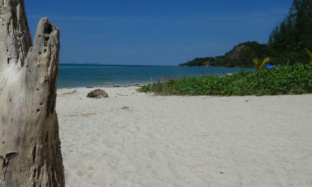 zen-beach-koh-phangan