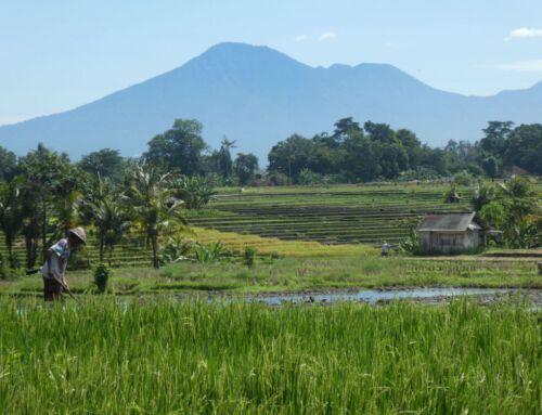 Bali – die spirituelle Vulkaninsel im indischen Ozean